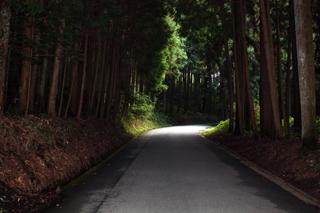 yukusue_edited-3jpg